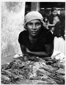 c969-iguana-seller_1